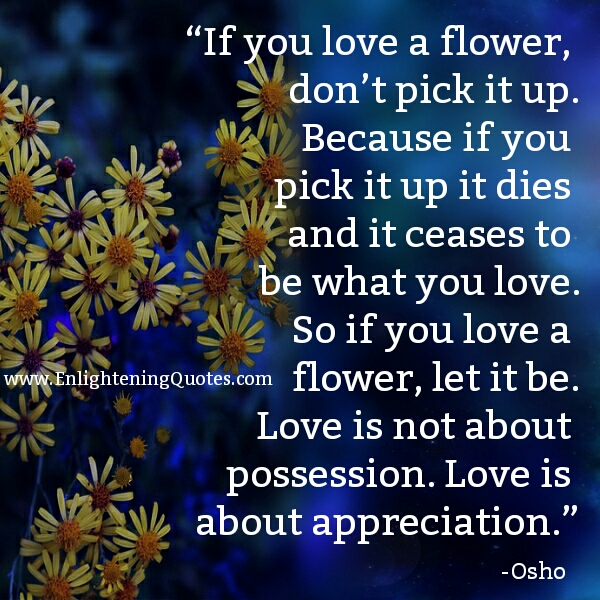 Love is about appreciation